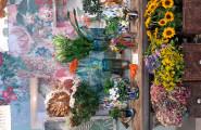 Blumenladen in Stuttgart