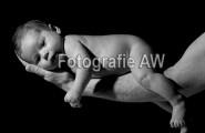 Fotografie Ihres Neugeborenen