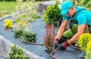 Kompetenter Ansprechpartner für innovativen Garten- und Landschaftsbau - rund um gewerbliche und private Immobilien