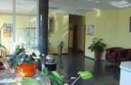 Wartezimmer der Tierarztpraxis Dr. Frank Dieffenbacher in Neustrelitz