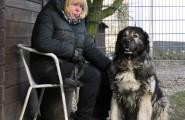 Hundetrainerin und Hund