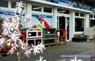 Zoofachmarkt in Erkner - Ihr Heimtier- und Gartenteichprofi