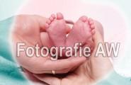 Neugeborene - Fotoshooting