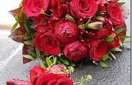 Blütenrausch Stöckle bietet gesunde und frische Blumen an