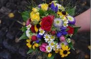 Ein buntes Spektrum an Blumen finden Sie bei Blütenrausch Stöckle