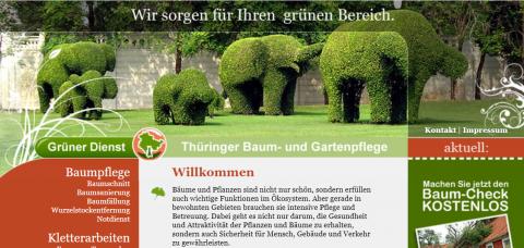 Baumpflege in Erfurt – Grüner Dienst in Erfurt