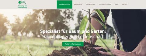 Professionelle Gartenplanung – Goos Baumpflege in Brühl