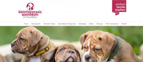 Ihre professionelle Tierärztin – Kleintierpraxis Weinheim in Weinheim