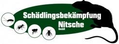 Nitsche Schädlingsbekämpfung bei Papenburg  | Aschendorf