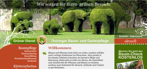 Firmenprofil von: Baumpflege in Erfurt – Grüner Dienst