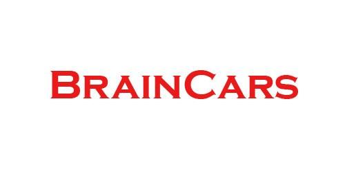 Firmenprofil von: Ihre Ansprechpartner für Autoreparaturen in Bitterfeld: BrainCars