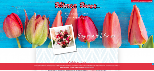 Firmenprofil von: Ihr Blumenladen in Bremen: Blumen Basar GbR