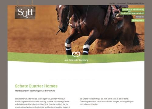 Firmenprofil von: Bio-Hof Schatz: Quarter Horse – vom Fohlen bis zum ausgewachsenen Pferd in liebevoller Züchtung
